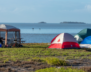 flamingo camping - tent