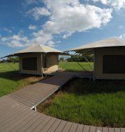 eco-tents