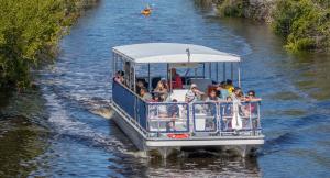 boat tour in flamingo