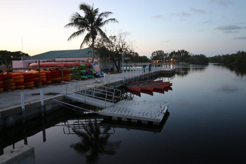 flamingo deck